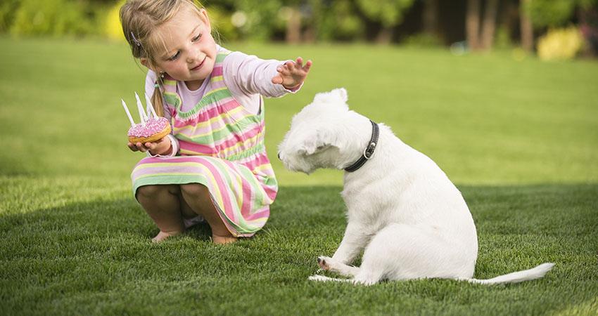 Young girl with birthday doughnut stroking dog in garden